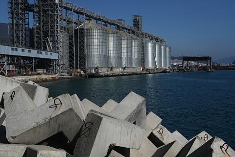 Экспортные цены на пшеницу начали расти