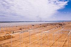 «Эко-культура» хочет построить 300 гектаров теплиц в Узбекистане