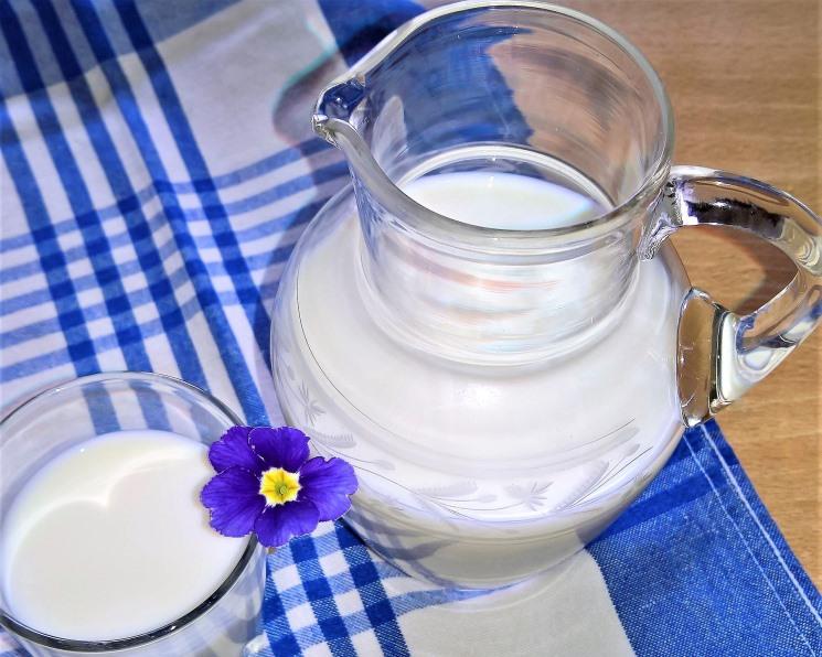 Производители молока могут потерять 84 млрд рублей