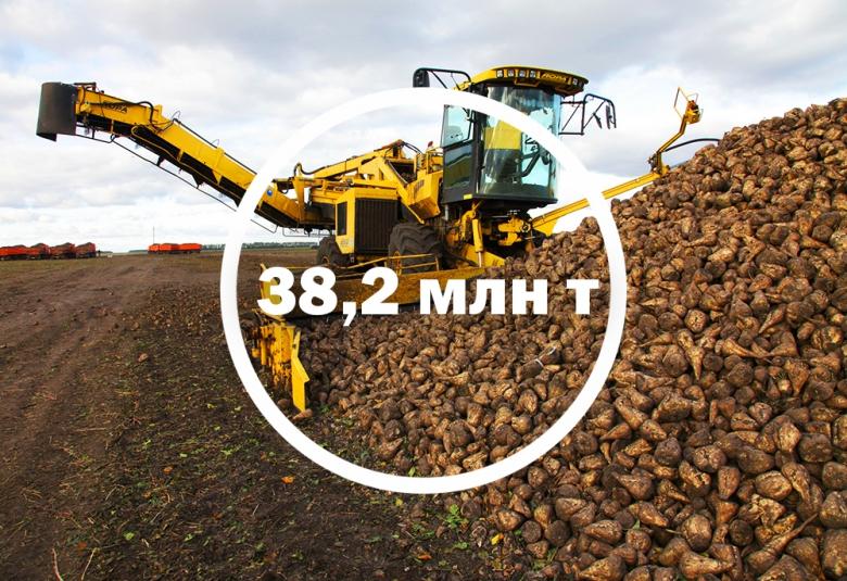 Сахарная свекла прибавит 4,7 млн т