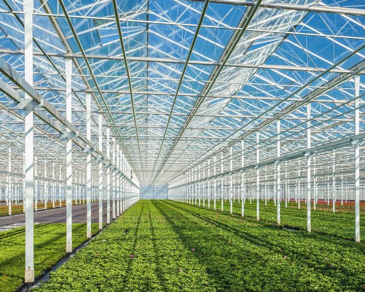 Минсельхоз обновит систему поддержки аграриев
