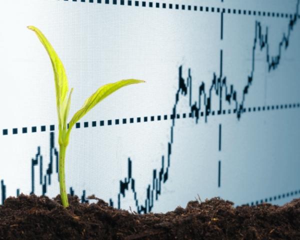 АПК вырос на 4,8%