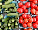 Пять регионов собрали треть урожая тепличных овощей