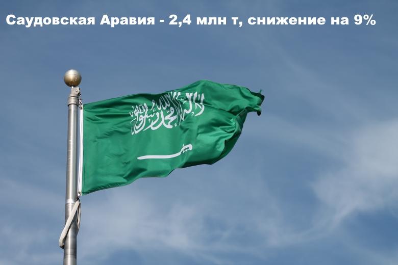 Саудовская Аравия— 2,4 млн т, снижение на 9%