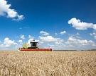 Урожайность зерновых бьет рекорды
