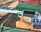 FAS USDA понизила прогноз экспорта пшеницы из России