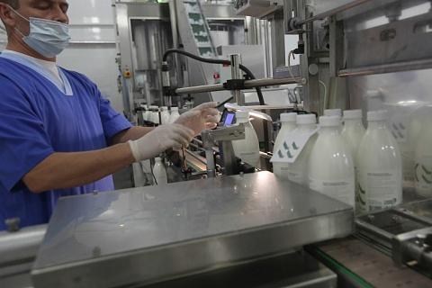 Обязательная маркировка молочных продуктов может начаться с марта 2020 года