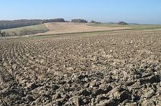 Земельная реформа обойдется в 21 млрд рублей