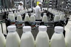 Эксперимент по маркировке молочной продукции может не состояться
