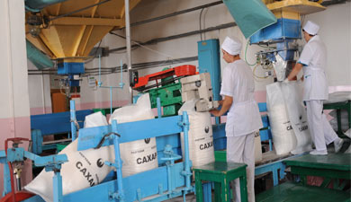 Сначала сезона Россия экспортировала 300 тыс. тсахара