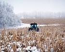 Путин: урожай зерна превысит 119 млн тонн