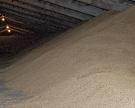 Цены на зерно в России почти замерли