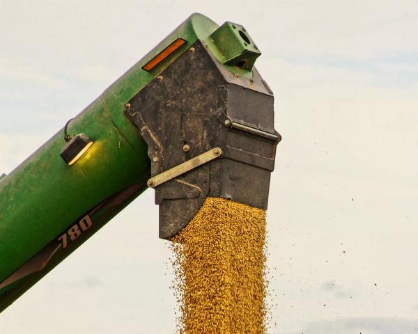 «АгроТерра» поставила наэкспорт первую партию сои— 4 тыс. т