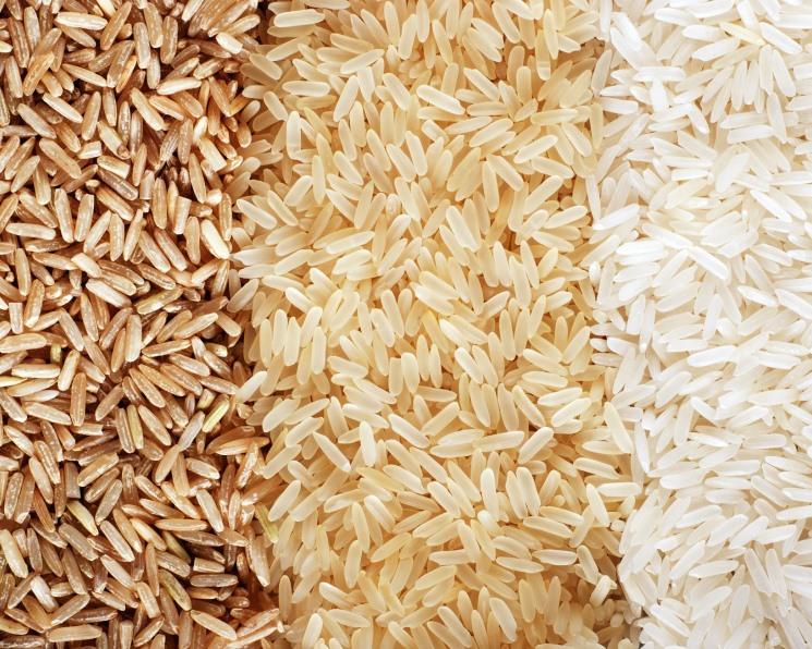 «АФГ Националь» зарегистрировал три новых сорта риса
