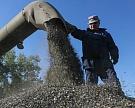 В России будет собрано почти 10 млн тонн подсолнечника