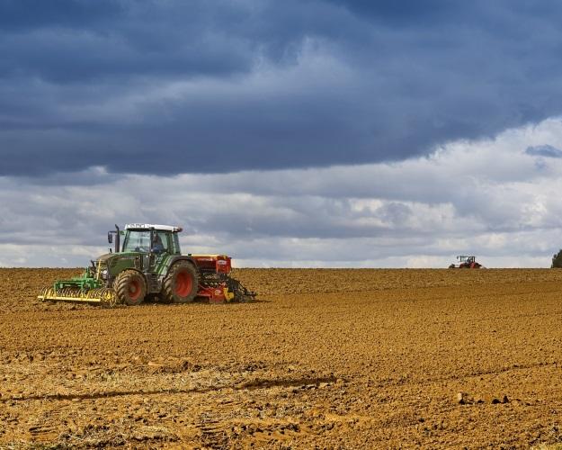 Топ-10 регионов уберут 46% посевов агрокультур встране