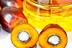 Импорт пальмового масла в Россию вырос на 27%