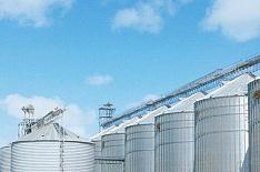 Минсельхоз запретил продавать интервенционное зерно на экспорт