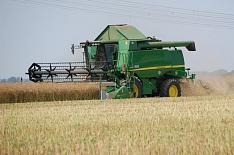 Сибирь нагнала прошлогодний темп уборки пшеницы