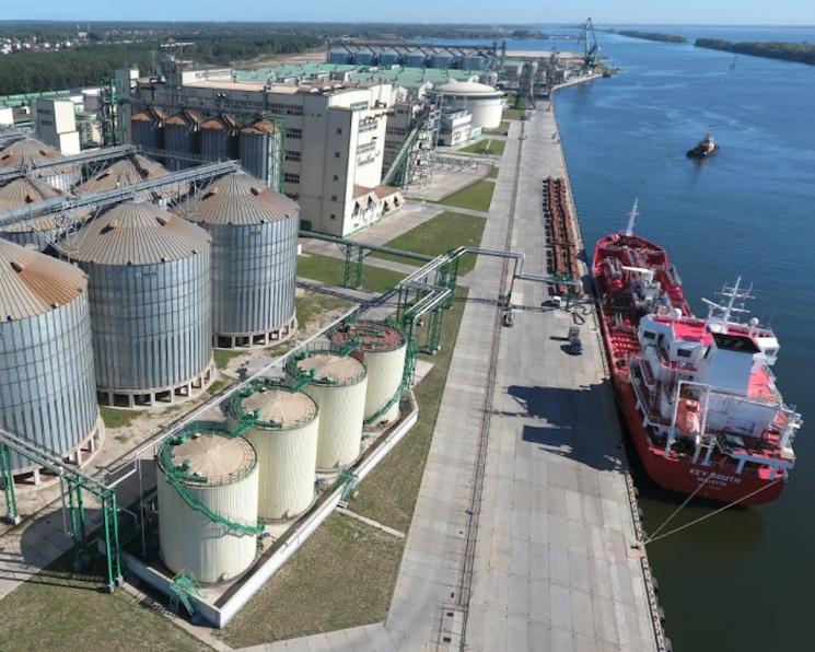 Экспорт зерна замедлился