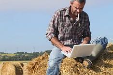 Один в поле. Количество людей, занятых в сельском хозяйстве, будет сокращаться