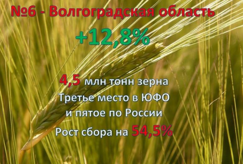 6. Волгоградская область