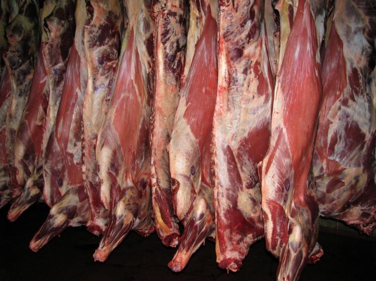 цены предложения крупный рогатого скота мясо апоцет почему Почта