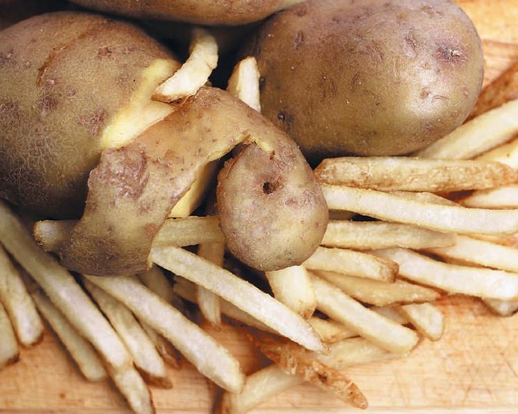 Картофель в тупике. Туманное будущее российского картофелеводства