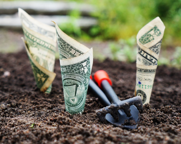 Минсельхоз ожидает четырехкратного роста рентабельности агропредприятий