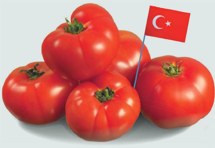 Турецкие томаты разрешены к ввозу в Россию с 1мая