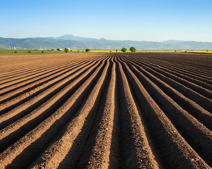 Апология прогресса. Почему органическому производству не найдётся места в будущем планеты