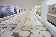 «Русагро» намерена войти в топ-3 производителей сыра