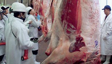 Зубков обещает мясное «самообеспечение»