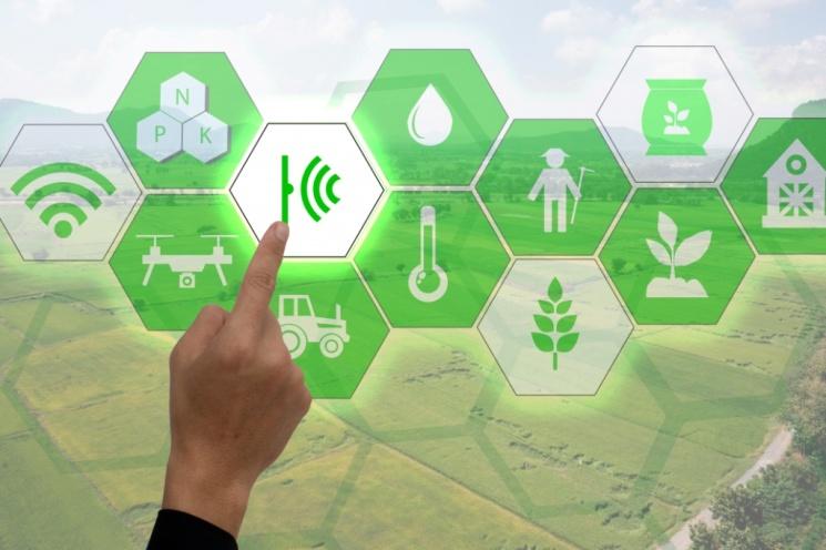 Цифровые экосистемы – реальный бизнес-инструмент