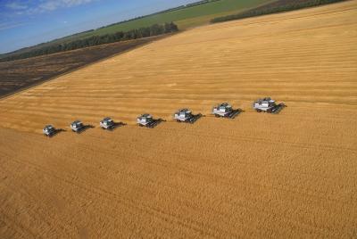 Агробизнес впяти районах