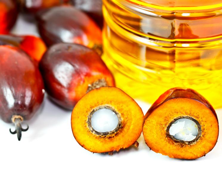 Импорт «пальмы» перевалил за 1 млн тонн. Как эти объемы распределяются на российском рынке