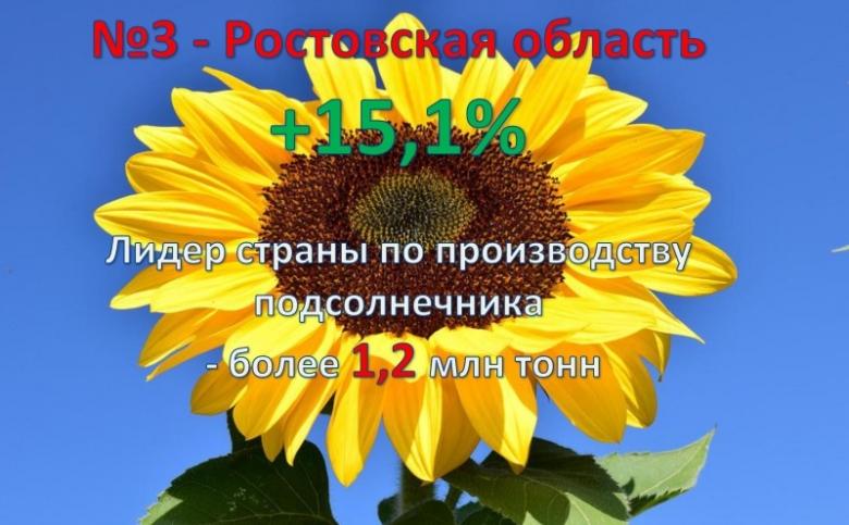 3. Ростовская область