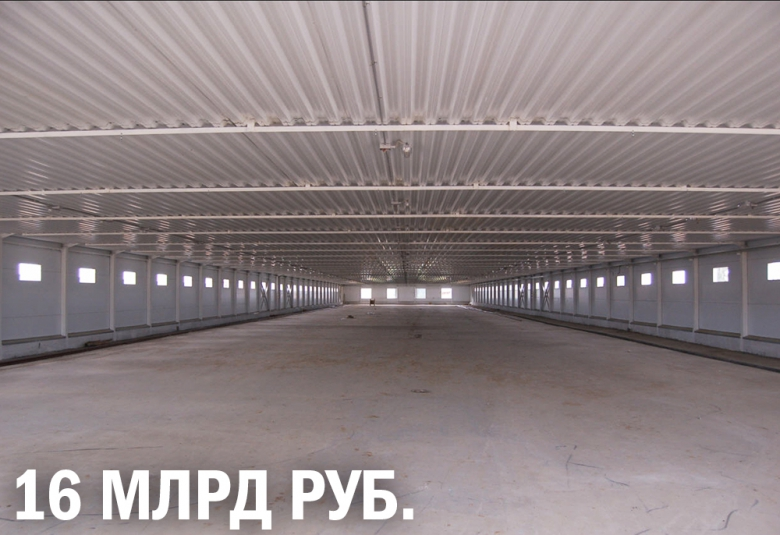 «Русагро» вложит 16млрдруб. в свиноводство
