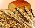 Хлебом единым