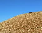 Экспорт зерна по итогам сезона может вырасти на 20%