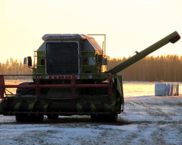 РФ собрала неменее 119 млн тонн зерна загод
