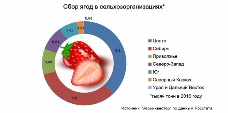 Больше всего ягод вырастили вЦентральном федеральном округе