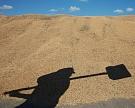 Ткачев: зерно будет основным источником экспортных доходов