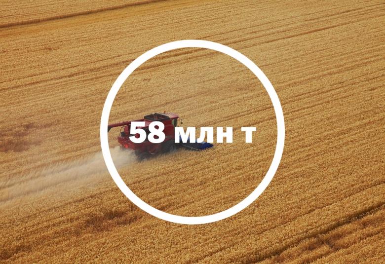 Сбор пшеницы будет хуже прошлогоднего