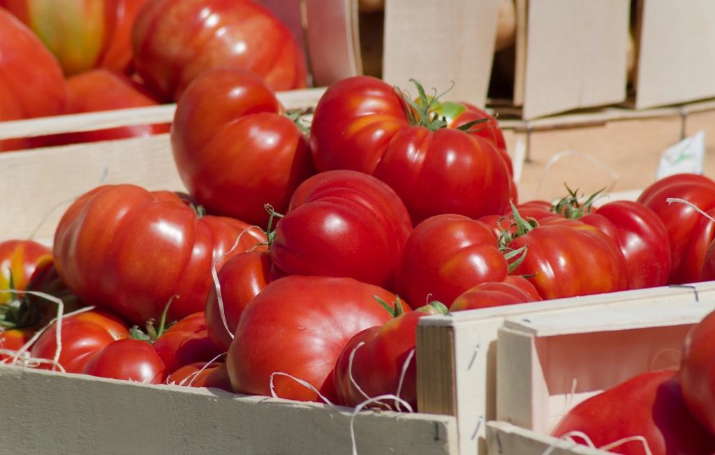 tomatoes-4260259_1920.jpg