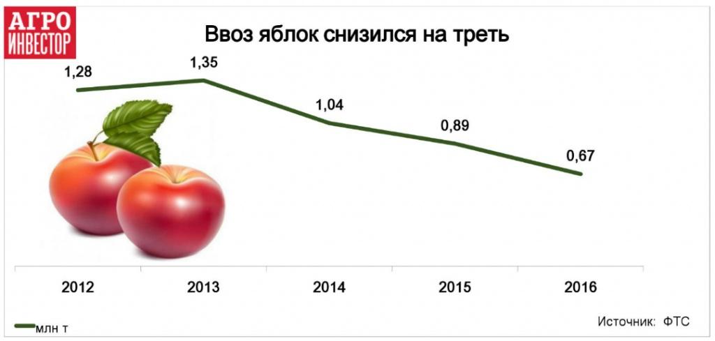 Ввоз яблок снизился на треть