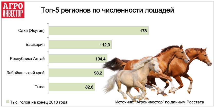 Топ-5 регионов по численности лошадей