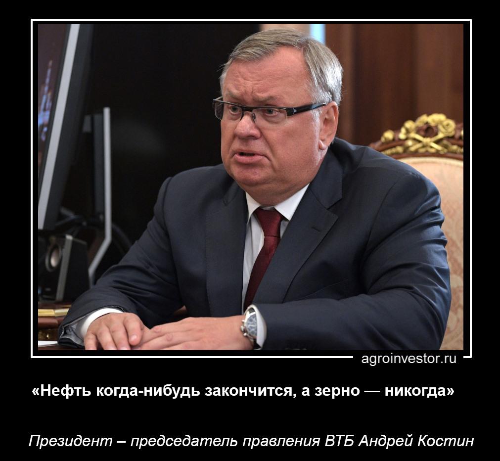 1_Костин_д31.jpg