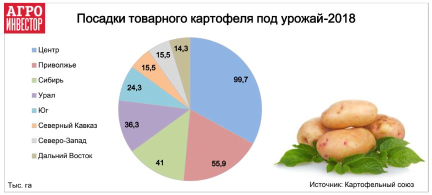 Посадки товарного картофеля