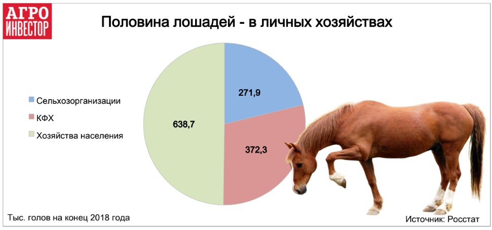 коневодство традиционно является практически неотъемлемой частью жизни сельского населения